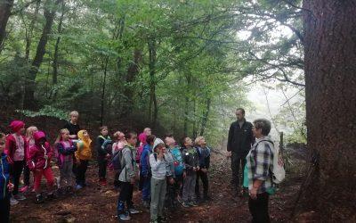 Naravoslovni dan–  Stopinje živali in gozdni bonton