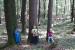v-gozdu-11