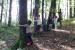 v-gozdu-5